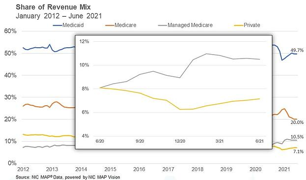 SNF Revenue Mix June 2021-1